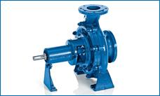 ANDRITZ Ritz end suction pump